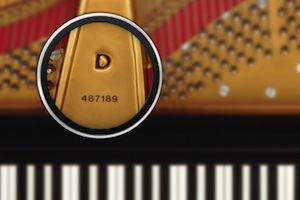 Steinway Grand Piano Serial Number
